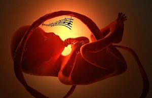 Nhạc giao hưởng cho bà bầu có thực sự tốt với thai nhi?